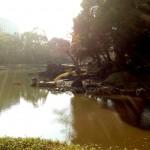 都会の真ん中で日本庭園を歩く