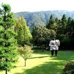 箱根彫刻の森美術館、ヘンリー・ムーアを求めて芝生の海原へ