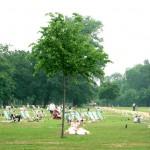 ロンドン中心部にあるハイドパーク、小さな池を眺めながらゆったり日光浴