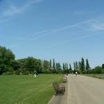 ロンドンの夏、リージェンツパークでひとりランチと芝生でごろごろ