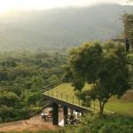スリランカのジャングルに溶け込むリゾートホテル、ヘリタンス・カンダラマ