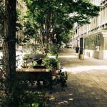 ハイセンスなストリートで都会のオアシス、丸の内をぶらり散歩