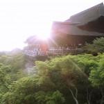 高度な技術によって建てられた清水寺、自然と一体になった神秘的な姿