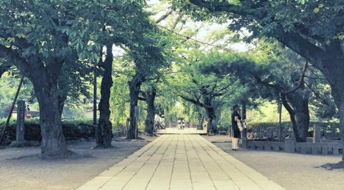 清々しい空気が流れる境内、かつて源頼朝が源氏再興を祈願した三嶋大社へ
