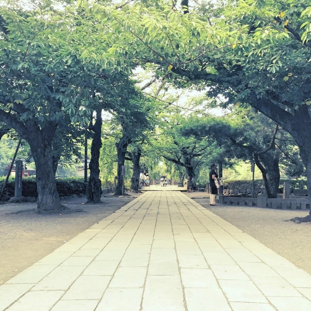 mishimataisha1